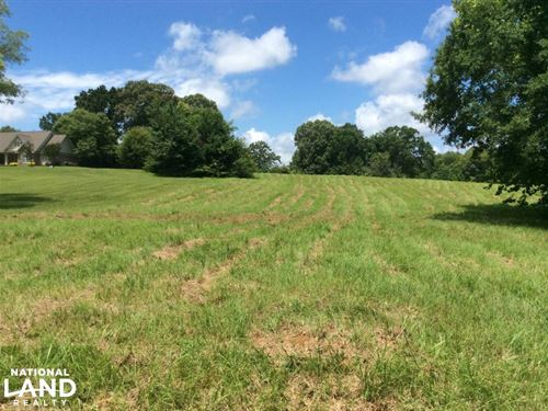 Country Meadow Estates Lot 21 : Terry : Hinds County : Mississippi