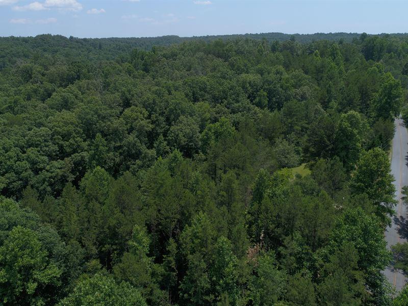 Wooded Acreage With Creek : Walhalla : Oconee County : South Carolina