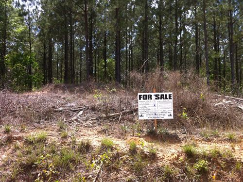 Hickory Hollow Farms - 3.16 Acre : Gray Court : Laurens County : South Carolina