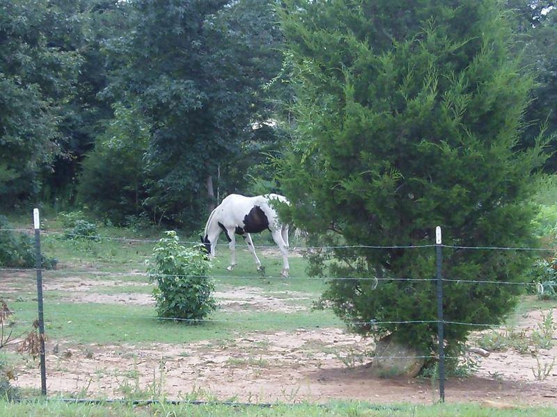 Turkey Creek Farms, 3.05 Acre Lot : Hogansville : Meriwether County : Georgia