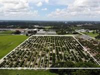 Dundee Road Development : Winter Haven : Polk County : Florida