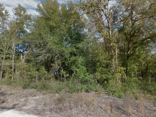 Wakulla County, Fl $15,000 : Crawfordville : Wakulla County : Florida