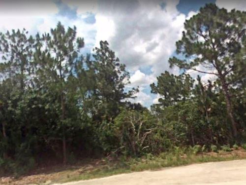 Lee County, Fl $24,500 : Lehigh Acres : Lee County : Florida