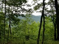 5.49+/-Acres Wooded Tract W/ Views : South Pittsburg : Marion County : Tennessee