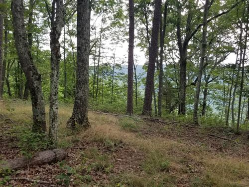8.16+/-Acres Secluded With Views : South Pittsburg : Marion County : Tennessee