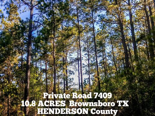 10.80 Acres In Henderson County : Brownsboro : Henderson County : Texas