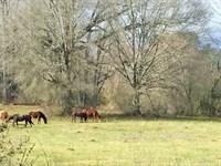Apalachee River Tract-B : Winder : Barrow County : Georgia
