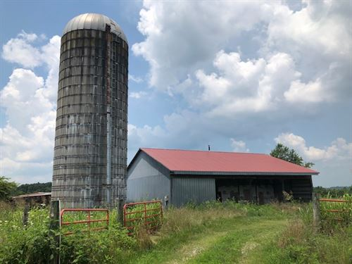 13 Acres In Green County, Ky : Hardyville : Green County : Kentucky