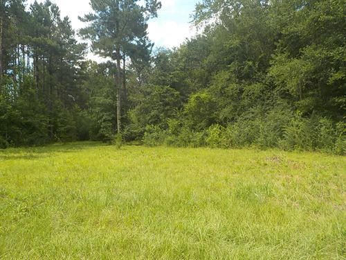 Fantastic Property, No Restrictions : Purvis : Lamar County : Mississippi