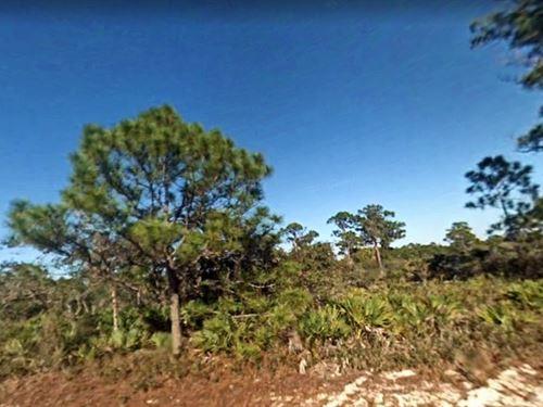 Highlands County, Fl $16,000 : Lake Placid : Highlands County : Florida