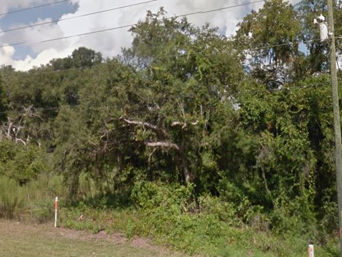 Citrus County, Fl $30,000 Reduced : Hernando : Citrus County : Florida
