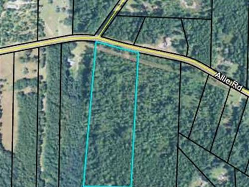 Nicely Wooded 13.105 Acre Tract : Greenville : Meriwether County : Georgia