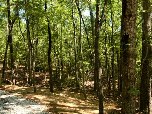 North Skyland Drive Mountain Lot : Marietta : Greenville County : South Carolina