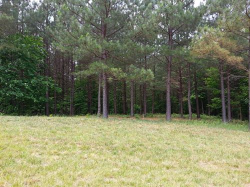 4.87+/-Acres For Only 15K In Ridges : South Pittsburg : Marion County : Tennessee