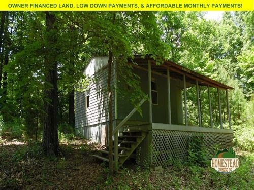 Cabin In Unrestricted Area : Williford : Sharp County : Arkansas