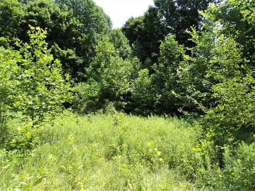Land For Sale, Owen County, Beau : Gosport : Owen County : Indiana
