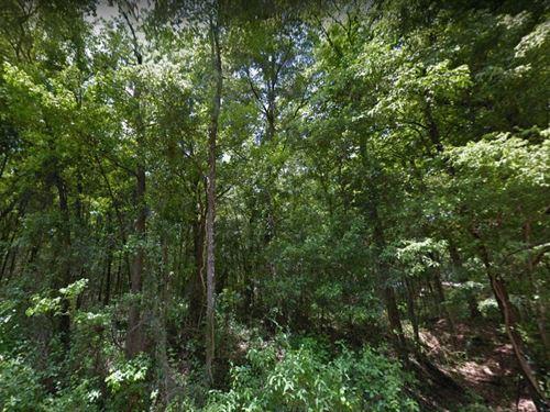 Citrus County, Fl $35,000 : Floral City : Citrus County : Florida