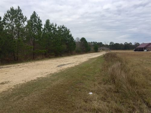 Country Homesite : Picayune : Pearl River County : Mississippi