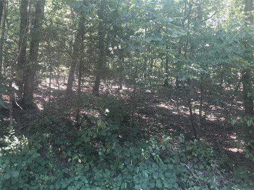 2 Acre Wooded Lot For Sale Floyd : Floyd : White County : Arkansas