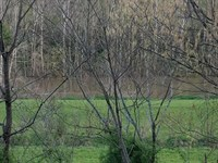 Riverfront With Hunting Land : Sneedville : Hancock County : Tennessee