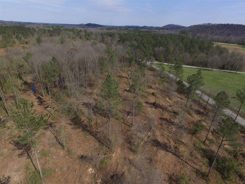 Cedartown Farms - 3.09 Acre Lot : Cedartown : Polk County : Georgia