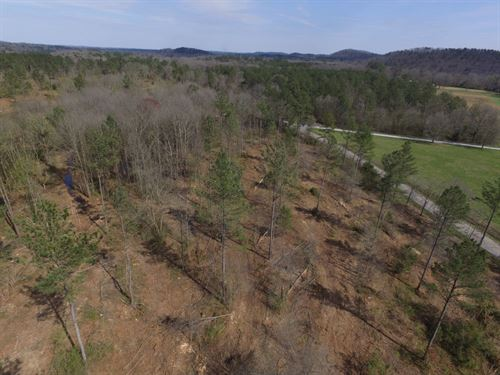 Cedartown Farms, 3.09 Acre Lot : Cedartown : Polk County : Georgia