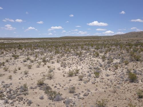 Tr 5245 20 Acres In The High Deser : Terlingua : Brewster County : Texas