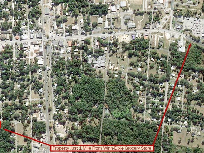 Beautiful Lot In Sunshine State : Williston : Levy County : Florida