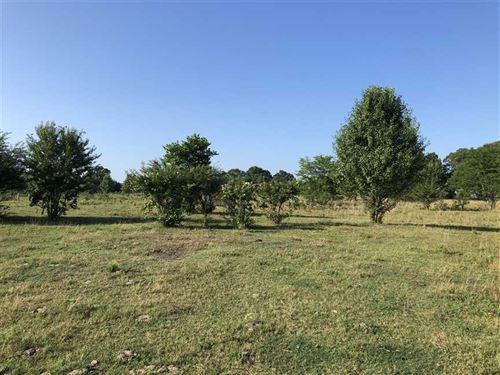 5 Acres Northwest of Searcy Good : Searcy : White County : Arkansas
