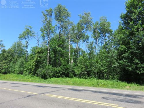 Buildable 5 Acre Lot In Washburn Co : Birchwood : Washburn County : Wisconsin