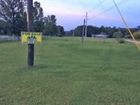 Butler Crystal Orchard Tract : Dozier : Covington County : Alabama
