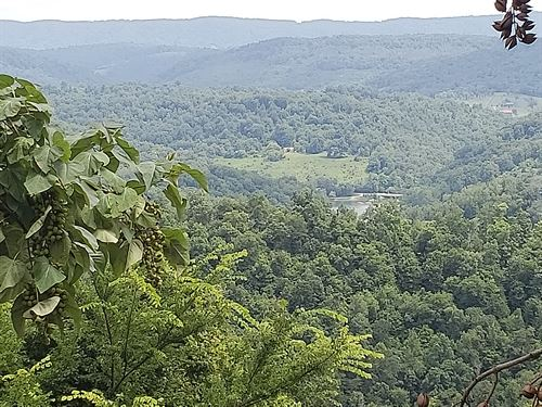 Norris Lake View Lot, Lake Access : New Tazewell : Claiborne County : Tennessee