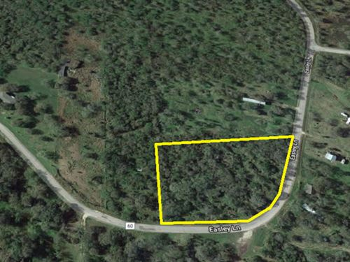 Unrestricted Corner Lot : Sandia : Nueces County : Texas