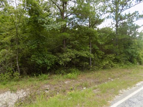 Evans Mill Road Land For Sale : Chesterfield : South Carolina