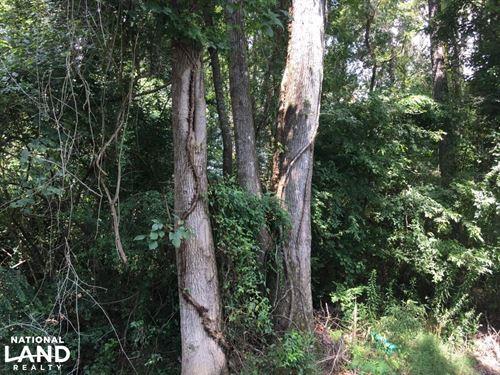 Dearmanville Lots & Home Sites : Anniston : Calhoun County : Alabama