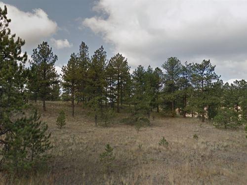 Teller County, Co $32,000 : Florissant : Teller County : Colorado