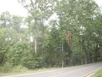 5.29 Acres - Richland County, Sc : Blythewood : Richland County : South Carolina