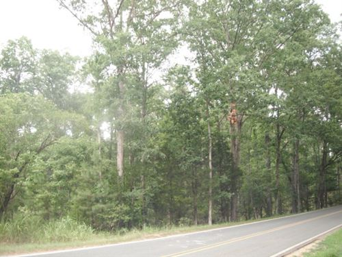 5.29 Acres - Richland County, Sc : Blythewood : Richland County : South Carolina