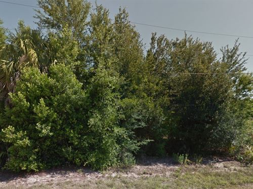 Citrus County, Fl $30,000 Neg : Crystal River : Citrus County : Florida