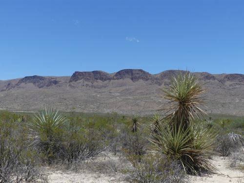 Tr 5205A 20 Acres In The High Dese : Terlingua : Brewster County : Texas