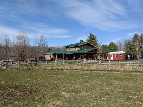 Nice Log Home On 10 Acres : Marion : Osceola County : Michigan