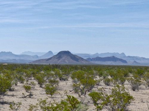 4871 Affordable 20 Acres : Terlingua : Brewster County : Texas
