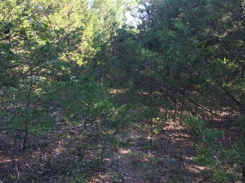 .15 Acres In Mountain Home, AR : Mountain Home : Baxter County : Arkansas