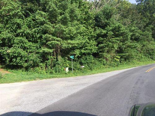Wooded Tract Floyd County : Floyd : Virginia