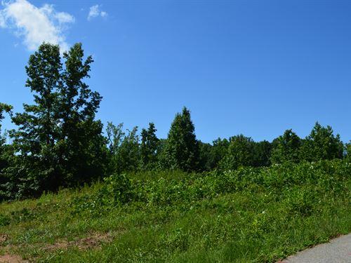 4.4 +/- Acres In Campobello : Campobello : Spartanburg County : South Carolina