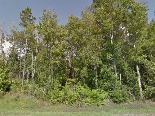 Lake County, Fl $20,000 : Clermont : Lake County : Florida