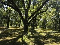 Awesome Pecan Grove Homesites : Milner : Lamar County : Georgia