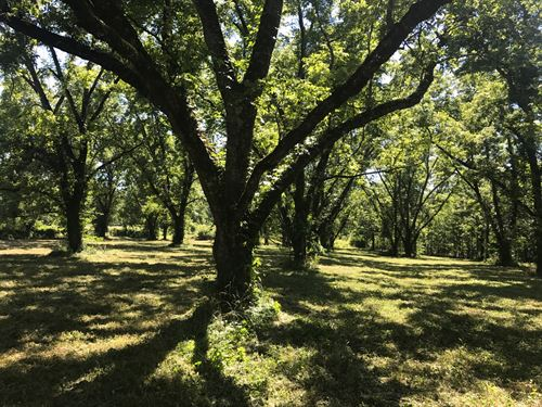 Awesome Pecan Grove Homesites : Milner : Lamar County : Georgia