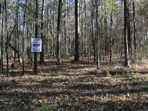 1.5 Acres River Road : Lowndesboro : Lowndes County : Alabama