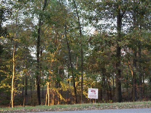 River Ridge Harbor Lot 42 : Montgomery : Alabama